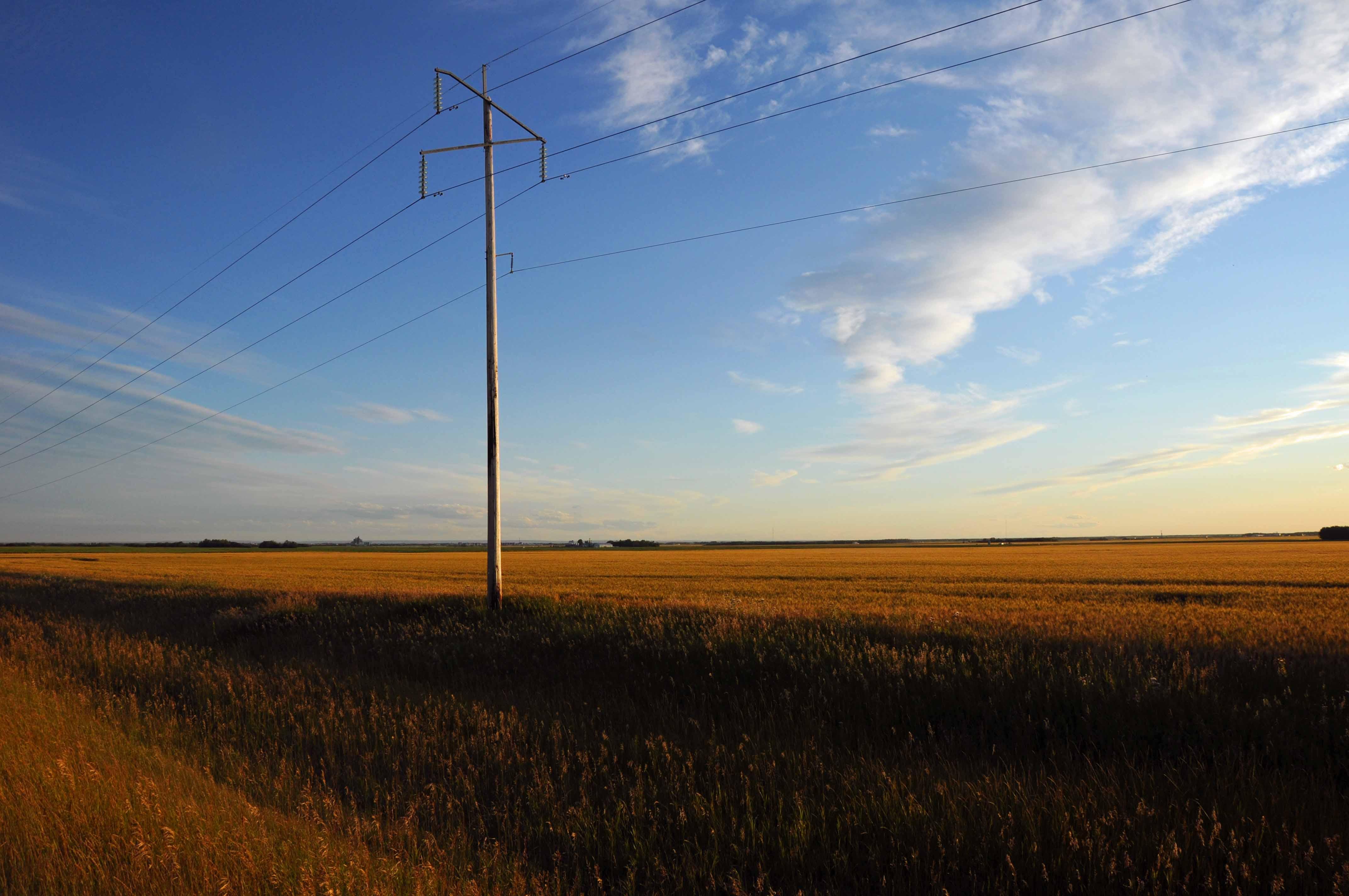 33 best wheat field images on Pinterest